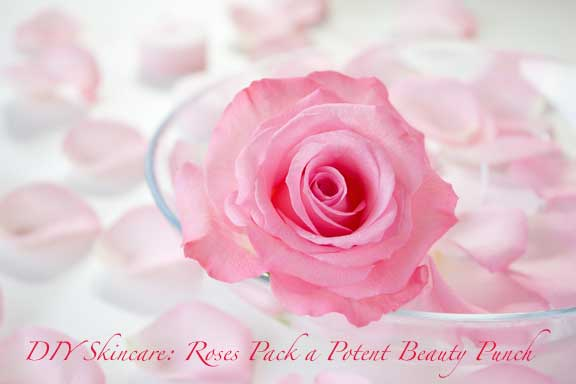 rose-beauty-benefits