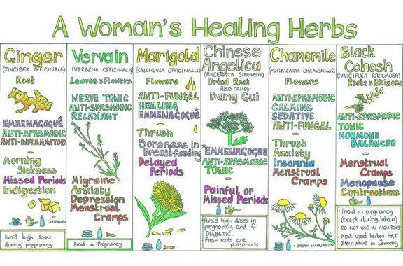 healing herbs 2