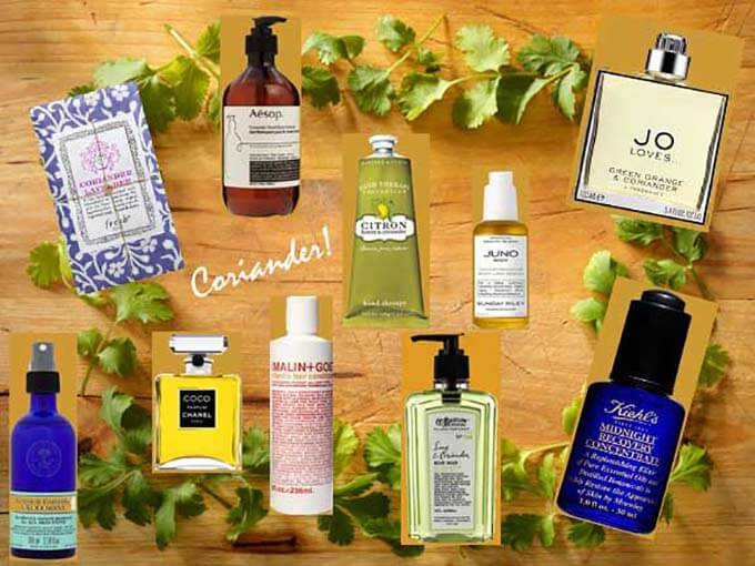 coriander-beauty-products