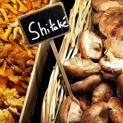 The magic of mushrooms: Skincare's latest must have ingredient