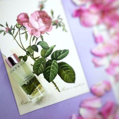 The Beauty Gypsy Review: Chantecaille Rose de Mai Face Oil